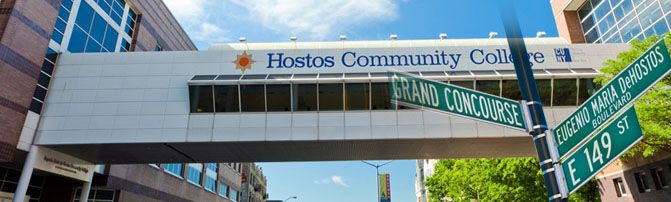 Image result for hostos college